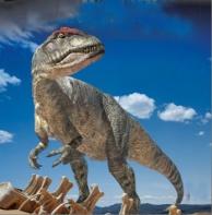dndkaallosaurus