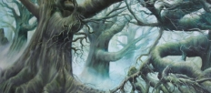 fantasy_art_fangorn_forest_by_ruudlips-d635z3f