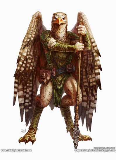 aarakocra_by_christopherburdett